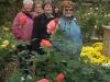 Rose Garden at Hillwood